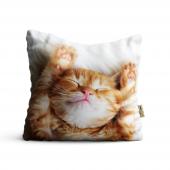 Kedi Desenli Dijital Baskılı Dekoratif Kırlent Kılıfı Anm01