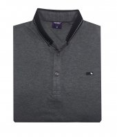 Polo Mirage Yakalı Erkek Tişört 2437