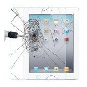 Ipad Air 2 Ekran Koruyucu (Tablet Kalemi Hediyeli)