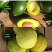 4 Kg Limon & 500 Gram Avakado Dalından Taze