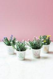 4lü Garden Love Yapay Şimşir