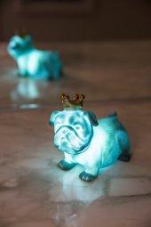 Mavi Kral Köpek 3d Led Işık