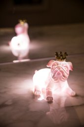 Pembe Kraliçe Köpek 3d Led Işık
