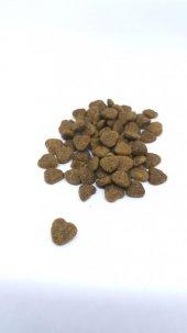 CatLike Tam Dengeli Kedi Kuru Maması 750 gr. (4×750gr)-5