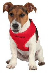 Trixie Yavru Köpek Göğ.tasma&kyışı,23 34cm 2m...