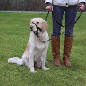 Trixie Uzman Köpek Eğitim Tasması M 27cm