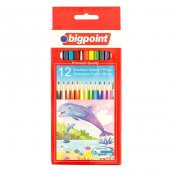 Bigpoint Aquarelle Boya Kalemi 12 Renk Fırçalı