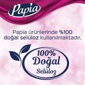 Papia Kağıt Havlu 48 Rulo-6