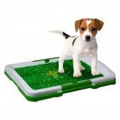 Yavru Köpek Tuvalet Eğitim Seti Puppy Potty Pad
