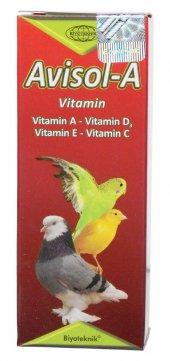 Muhabbet Kuşu D3 Vitamini Avisol A