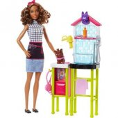 Barbie Ben Büyüyünce Oyun Seti