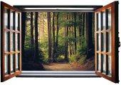 Pencere, Orman, Ağaçlar Duvar Sticker