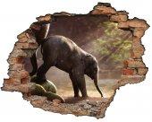 Kırık Tuğla, Fil Yavrusu Duvar Sticker