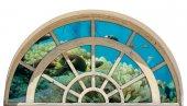 Pencere, Mercan, Balık Duvar Sticker