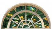 Pencere, Balıklar, Akvaryum Duvar Sticker