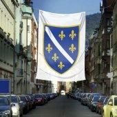 Bosna Hersek Bayrağı Raşel Bayrak (400x600 Cm)
