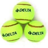 Delta 3 Adet Tenis Topu
