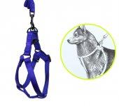 Ans Mavi Kedi Köpek Bel Göğüs Tasması 110 Cm