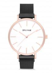 Spectrum Mıknatıslı Hasır Kordon Erkek Kol Saati M164377