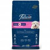 Felicia Az Tahıllı Kuzulu Hypoallergenic Yavru Köpek Maması, M L Irk, 15 Kg