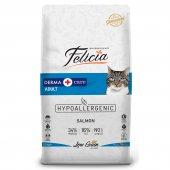 Felicia Az Tahıllı 12 Kg Yetişkin Somonluhypoallergenic Kedi Maması