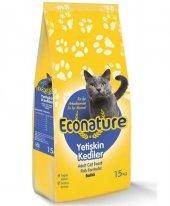 Econature Balıklı Yetişkin Kedi Maması, 15 Kg