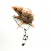 Kuru Kafalı Sol Anahtarı Figürlü Gümüş Renk Top Zincirli Kolye