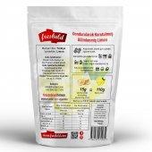 Fresheld Dondurularak Kurutulmuş Dilimlenmiş Limon 15gr-2