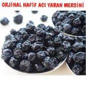 Yaban Mersini Kurusu Blueberry 1 Kg