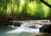 152 Doğa Dere
