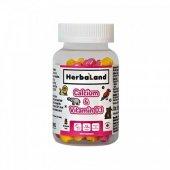 Herbaland Kids Calcium With Vitamin D3 60 Adet