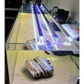 Aqualed Led Aydınlatma Armatür Karışık Renkli Mavi Beyaz 100cm