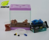 Mor Mini Akvaryum Seti Hava Seti İle Birlikte