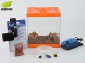 Turuncu Mini Akvaryum Seti Filtreli Hava Motorlu Komple Set