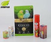 Gold Wings Muhabbet Kuşu Seti + Yem + Gaga Taşı + Vitamin + Miner