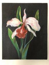 Orkide Yağlı Boya Tablo