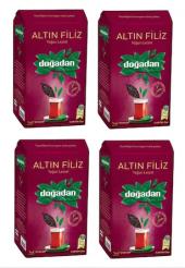 Doğadan Altın Filiz Çayı 1 Kg Siyah Çay (4 Paket)