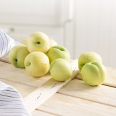 10 Litrelik Saksıda Tüplü Meyve Verme Durumunda Beyaz Çanakkale B