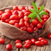 Tüplü Nq7 Kırmızı Goji Berry Fidanı