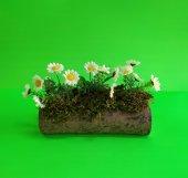 Kütük Saksıda Yapay Çiçek