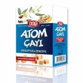 Dola Atom Çayı Okaliptus & Zencefil 100 Gr