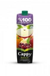 Cappy 100 Karışık Meyve Suyu 1 Lt