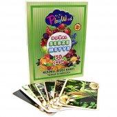 Eğitici Zeka Kartları Sebze Ve Meyve