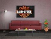 Harley Davidson Tablosu-2