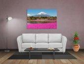 Fuji Dağı Manzarası Tablosu-2