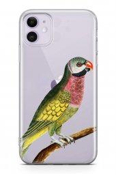 Apple İphone 11 Kılıf Silikon Arka Kapak Koruyucu Papağan Aşkına