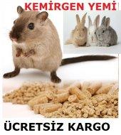 1 Kğ Kemirgen Hayvan Yemi (Tavşan Yemi , Hamsterla...