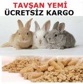 1 Kğ Tavşan Yemi