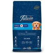 Felicia Az Tahıllı Somonlu Hypoallergenic Yetişkin Köpek Maması, M L Irk, 2 Kg, Açık, Skt 12 2020