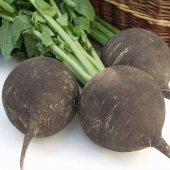 Mutlu Sebzeler Siyah Turp (2kg)